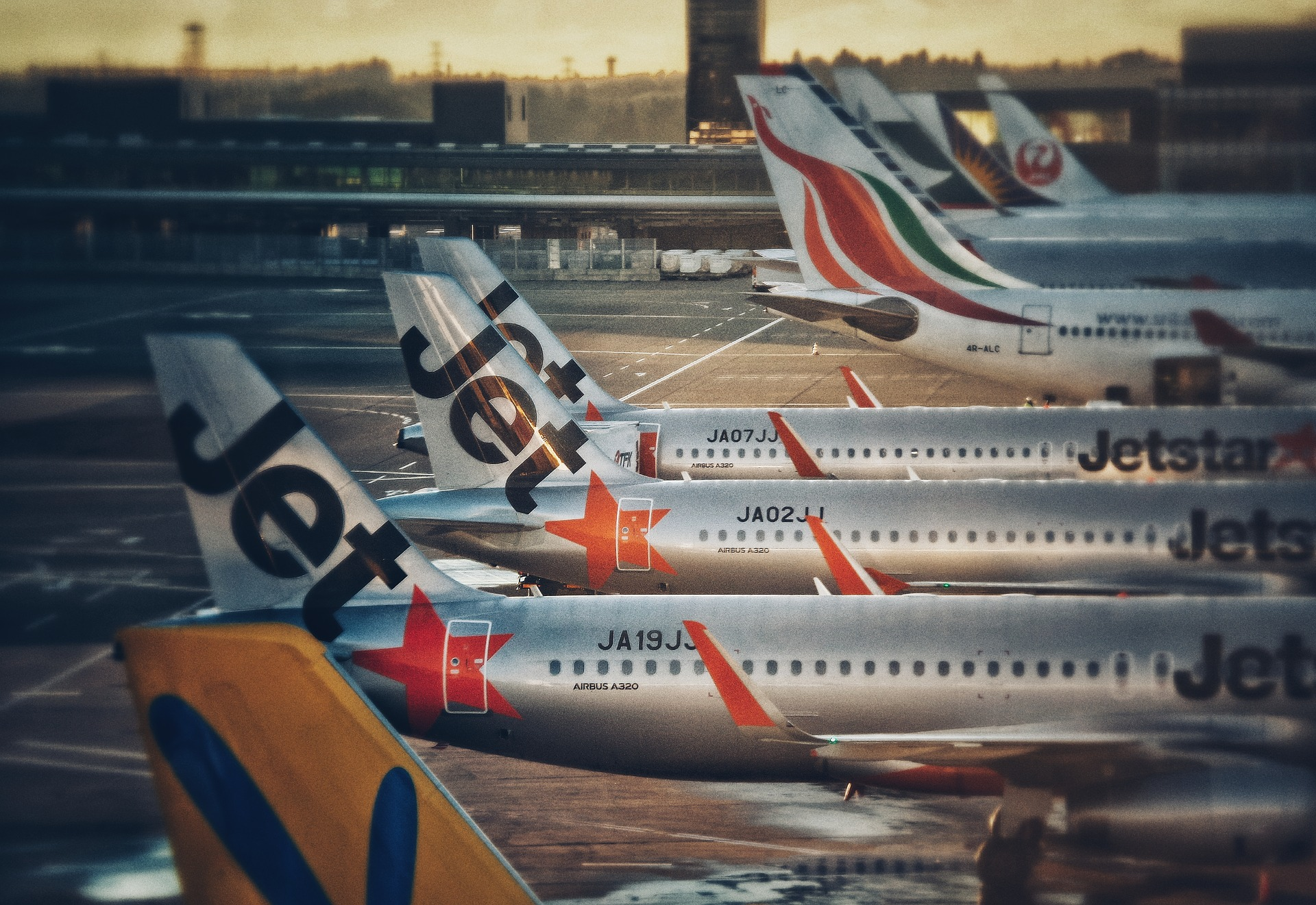 Airfreight Demand Is Booming As Low Cost Carriers Expand Cargo